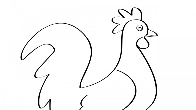 Image for Cock-a-Doodle-Doo – Coloring Page